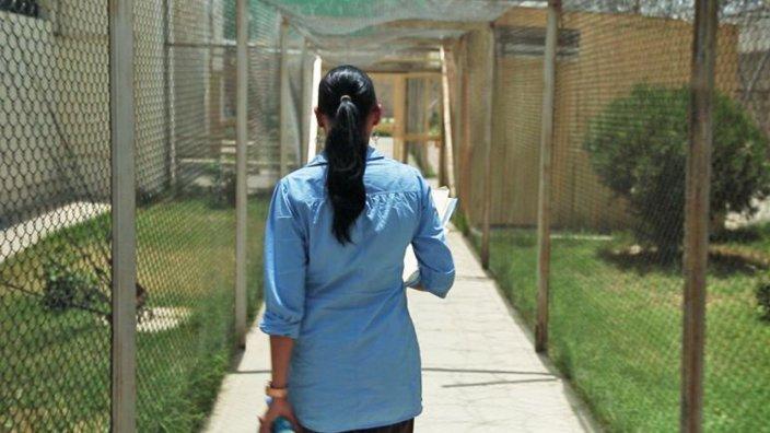 Super Woman In Kabul